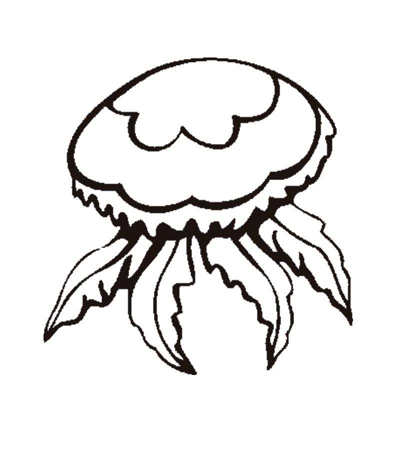 Pintar dibujos de medusas :: Imágenes y fotos